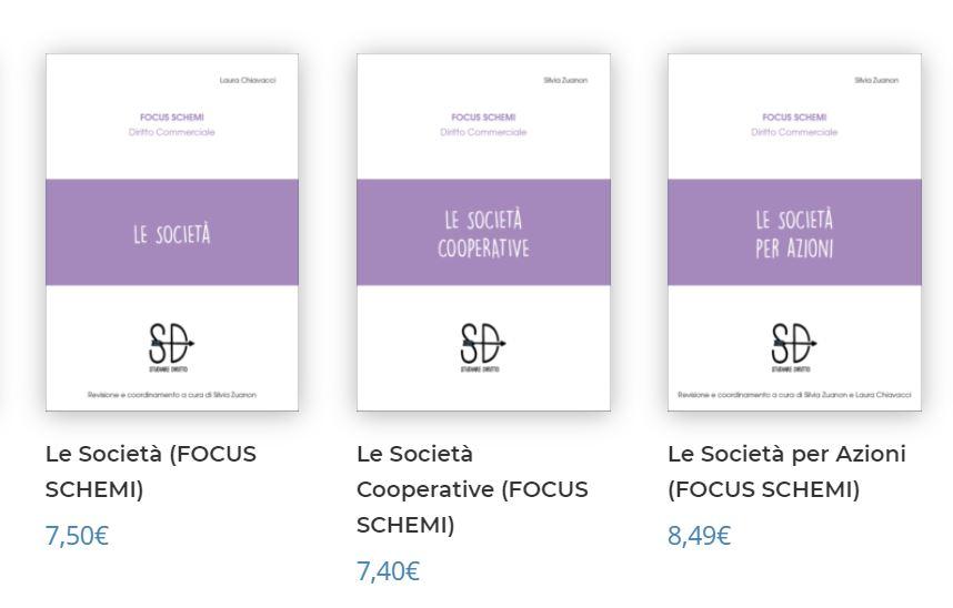 focus schemi diritto societario