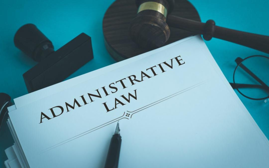 Esame di Diritto Amministrativo: tutto quello che DEVI sapere